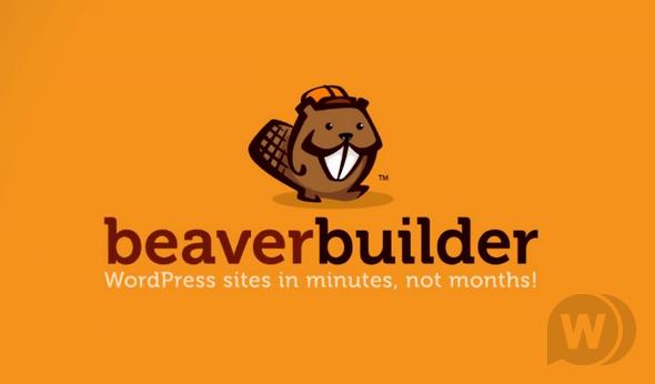 конструктор страниц для WordPress.png