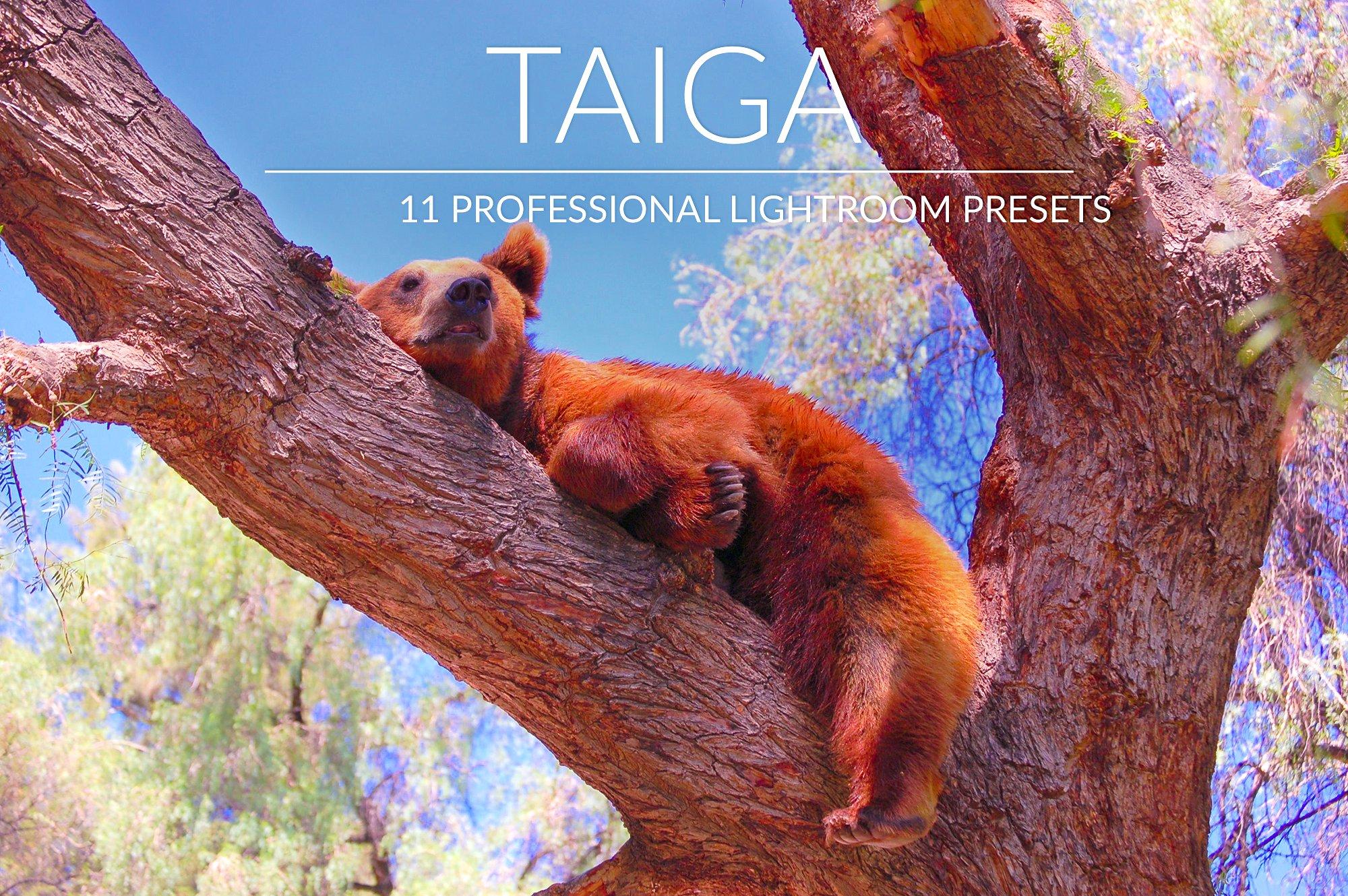[CreativeMarket] Taiga Lr Presets (2018).jpg